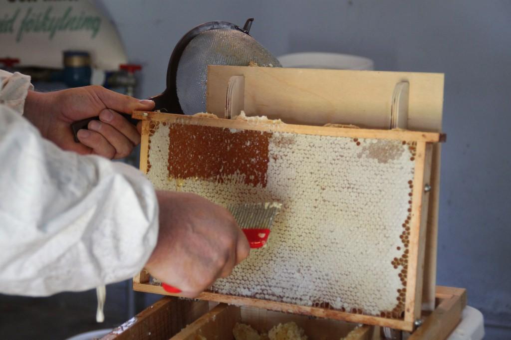 Honungen täcks av